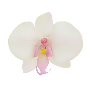 Karen Marie - Le Fleur Collection - Medium Phalaenopsis Orchid Clip - Ivory w/Pink (1)