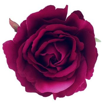 Karen Marie - Le Fleur Collection - American Beauty Rose - Burgundy  (1)