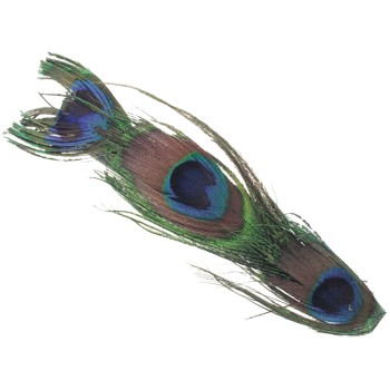 SOHO BEAT - Wild About Town - Peacock Feather Barrettes (Set of 2)